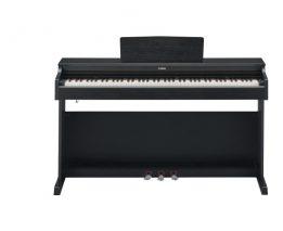 ydp163b_Roland5000